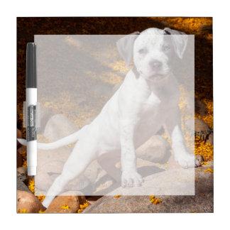 Retrato 2 del perrito de Staffordshire Terrier Tableros Blancos