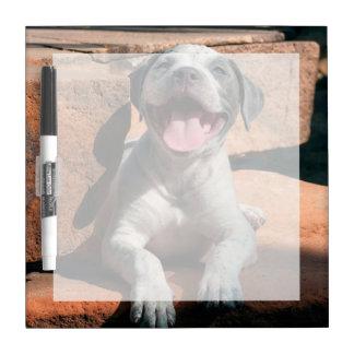 Retrato 4 del perrito de Staffordshire Terrier Pizarras Blancas De Calidad