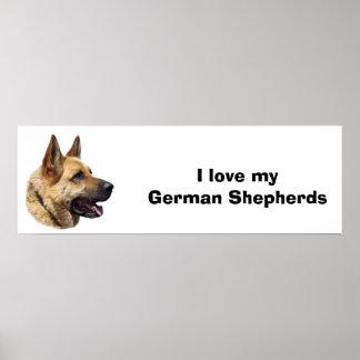 Retrato Alsatian del perro de pastor alemán Impresiones