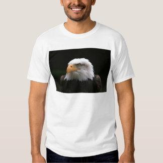 retrato americano de Eagle calvo Camisas