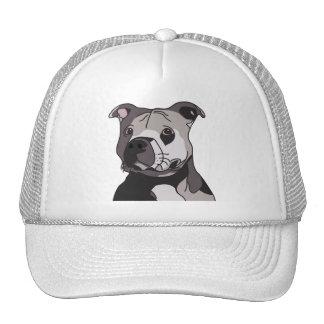 Retrato americano de Terrier de pitbull del dogo Gorras De Camionero