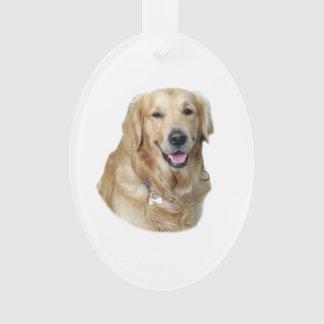 retrato antiguo de la foto del perro del perro