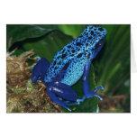 Retrato azul de la rana de la flecha del veneno felicitacion