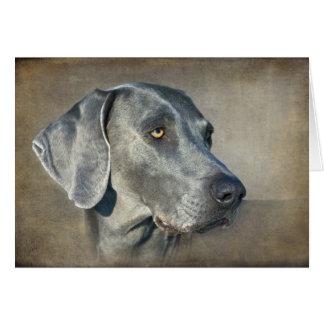 Retrato azul de plata de Weimaraner Tarjeta De Felicitación