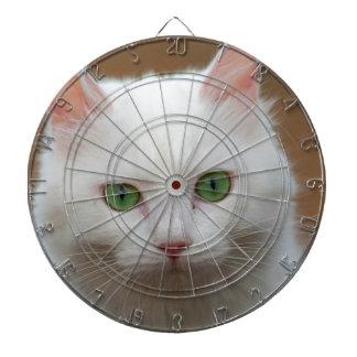 Retrato blanco de ojos verdes hermoso del gato