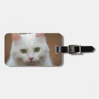 Retrato blanco de ojos verdes hermoso del gato etiquetas maleta