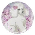 Retrato blanco del perrito del caniche plato de cena