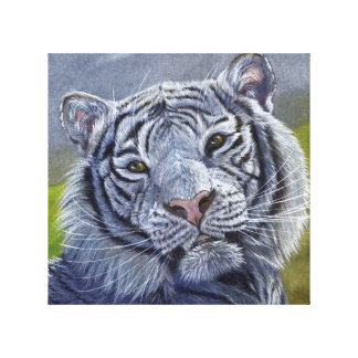 Retrato blanco del tigre de S. Ledneva-Schukina CC Lona Envuelta Para Galerias