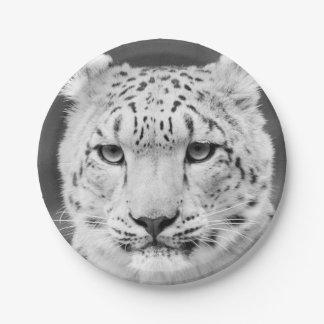 Retrato blanco y negro de la onza hermosa platos de papel