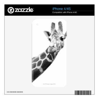 Retrato blanco y negro de una jirafa skins para eliPhone 4