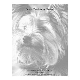 Retrato blanco y negro de Yorkshire Terrier Yorkie Membrete A Diseño