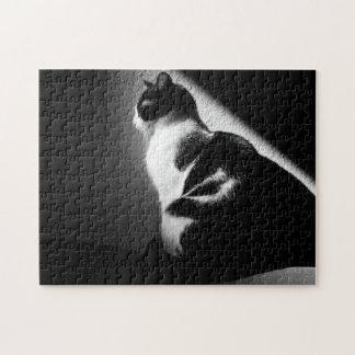 Retrato blanco y negro del gato puzzle
