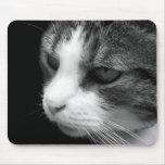 Retrato blanco y negro Mousepad del gato de Tabby Alfombrillas De Ratones
