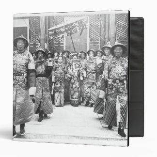 Retrato (de 1835-1908) viudas de emperatriz