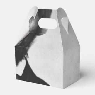 Retrato de Abraham Lincoln Caja Para Regalos
