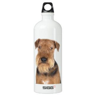 Retrato de Airedale Terrier