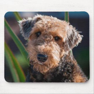 Retrato de Airedale Terrier 1 Alfombrilla De Ratón