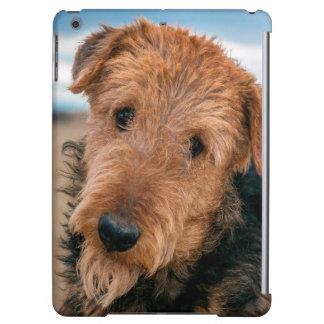 Retrato de Airedale Terrier 2