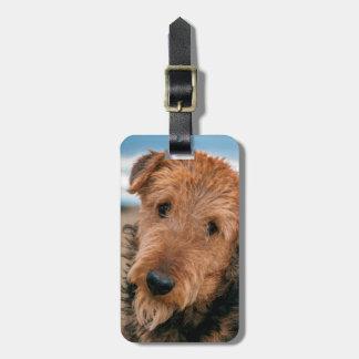 Retrato de Airedale Terrier 2 Etiquetas Maleta