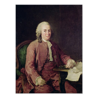Retrato de Carl von Linnaeus Posters