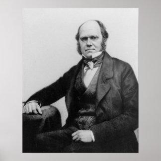 Retrato de Charles Darwin, 1854 Póster