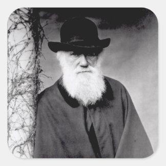 Retrato de Charles Darwin 1881 Pegatina Cuadrada
