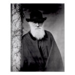 Retrato de Charles Darwin 1881 Poster
