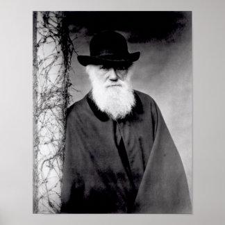 Retrato de Charles Darwin 1881 Póster