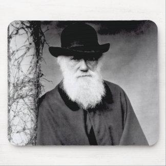 Retrato de Charles Darwin 1881 Tapete De Ratones