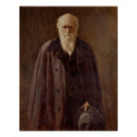 Retrato de Charles Darwin 1883 Póster
