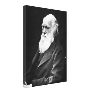 Retrato de Charles Darwin Lona Estirada Galerías