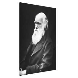 Retrato de Charles Darwin Impresión En Tela