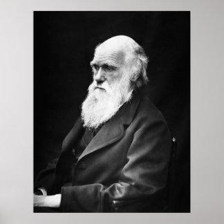 Retrato de Charles Darwin Póster