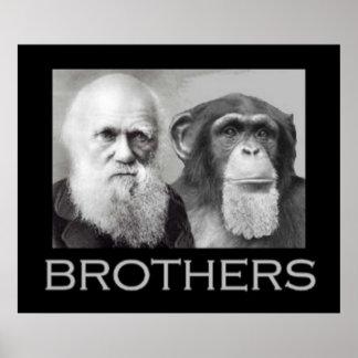 Retrato de Charles Darwin y del mono Póster