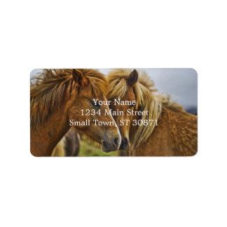 Retrato de dos caballos etiquetas de dirección