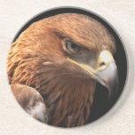 Retrato de Eagle aislado en negro Posavasos Para Bebidas