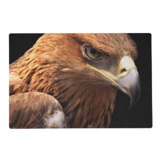 Retrato de Eagle aislado en negro Salvamanteles