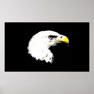 Retrato de Eagle calvo de la impresión del poster