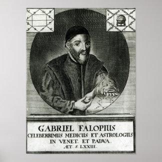 Retrato de Gabriel Fallopius Póster