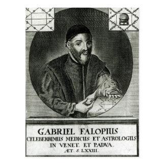 Retrato de Gabriel Fallopius Tarjeta Postal