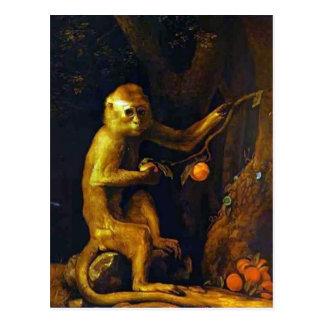 Retrato de George Stubbs- de un mono Tarjetas Postales