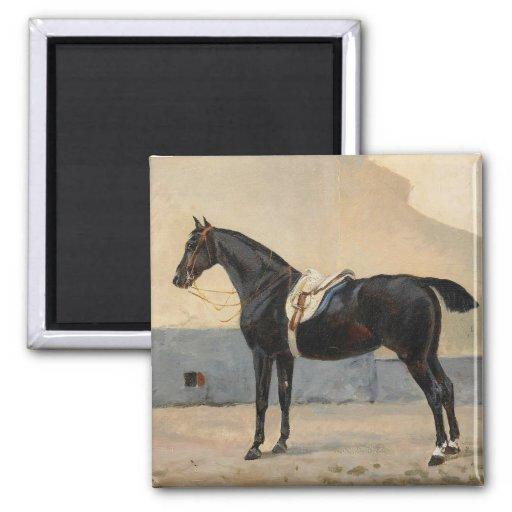 Retrato de Juan Arsenius-Häst Imán Cuadrado