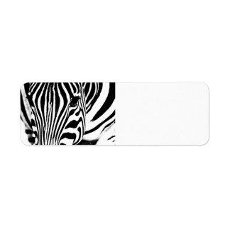 Retrato de la cebra blanco y negro etiqueta de remitente