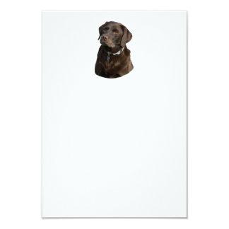 """Retrato de la foto de Labrador del chocolate Invitación 3.5"""" X 5"""""""