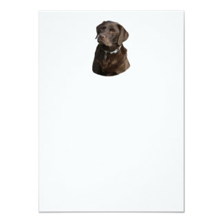"""Retrato de la foto de Labrador del chocolate Invitación 4.5"""" X 6.25"""""""