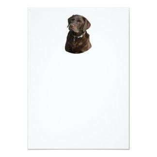 """Retrato de la foto de Labrador del chocolate Invitación 5"""" X 7"""""""