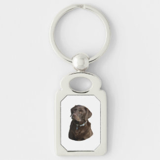 Retrato de la foto de Labrador del chocolate Llavero Plateado Rectangular