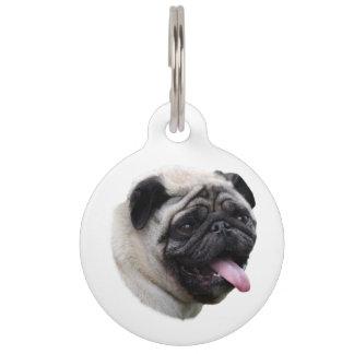 Retrato de la foto del mascota del perro del barro placas de mascota