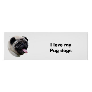Retrato de la foto del mascota del perro del barro póster
