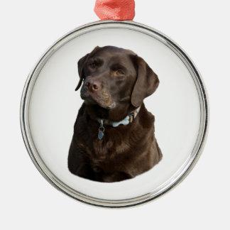 Retrato de la foto del perro de Labrador del Adorno Redondo Plateado
